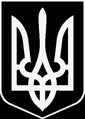 Принт Мужская толстовка на молнии Герб України з рамкою - FatLine