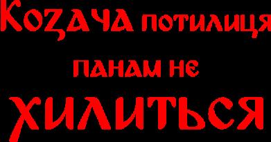 Принт Женская футболка Козача потилиця панам не хилиться - FatLine