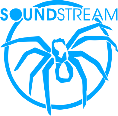 Принт SoundStream - FatLine