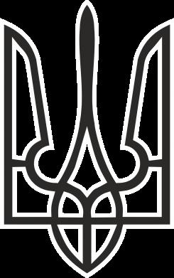 Принт кепка Герб України (двокольоровий) - FatLine