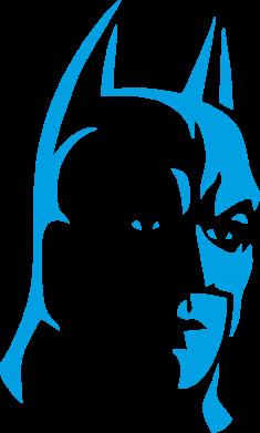 Принт Женская майка Batman Hero - FatLine