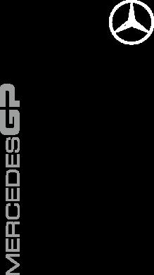 Принт Штаны Mercedes GP Logo - FatLine