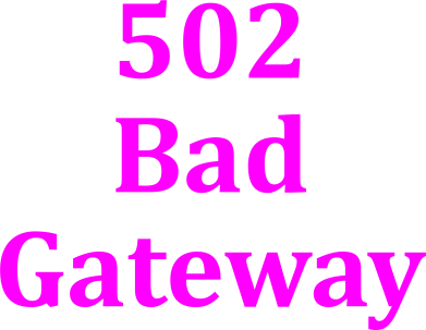 Принт Футболка 502 Bad Gateway - FatLine