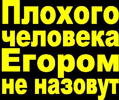 Принт Мужская толстовка Плохого человека Егором не назовут, Фото № 1 - FatLine