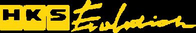 Принт Футболка HKS logo - FatLine