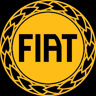 Принт Толстовка Fiat logo - FatLine