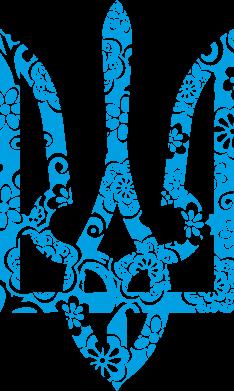 Принт Детская футболка Герб з візерунками - FatLine