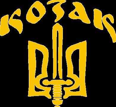Принт Футболка с длинным рукавом Козак з гербом - FatLine