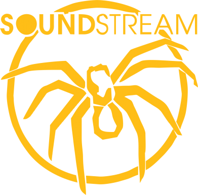 Принт Реглан SoundStream - FatLine