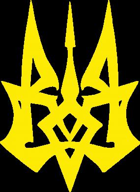 Принт Мужская толстовка Революційний Герб, Фото № 1 - FatLine