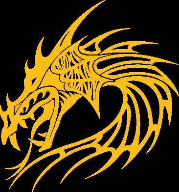 Принт Реглан Dragon - FatLine