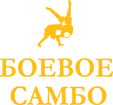 Принт Реглан Боевое Самбо - FatLine