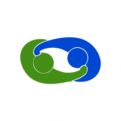 Принт Реглан (свитшот) Федерация Боевого Самбо Украина - FatLine