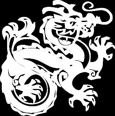 Принт Камуфляжная футболка Дракон - FatLine