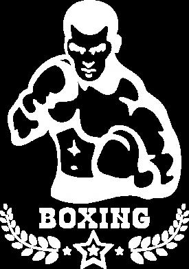 Принт Футболка Поло Boxing Star - FatLine