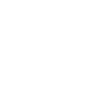 Принт Майка-тельняшка Full contact fighter K-1 Worldmax - FatLine