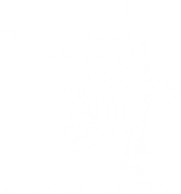 Принт Футболка Поло Train Hard or Go Home - FatLine