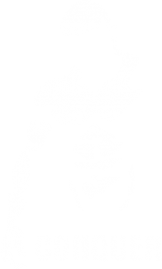 Принт Майка-тельняшка Conquer - FatLine