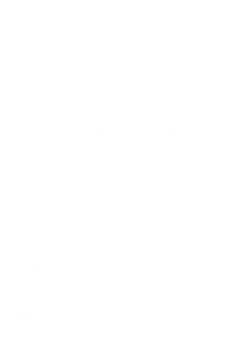 Принт Женская футболка с V-образным вырезом Владимир Высоцкий - FatLine