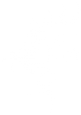 Принт Наклейка Ours is the fury - FatLine
