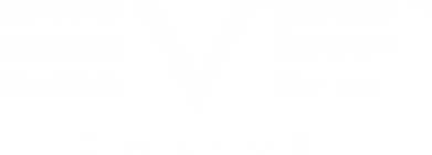 Принт Тельняшка с длинным рукавом EVE Online - FatLine