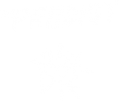 Принт Реглан The Prodigy Invanders Must Die - FatLine