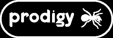 Принт Мужская толстовка на молнии Prodigy Logo - FatLine