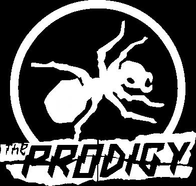 Принт Камуфляжная футболка The Prodigy муравей - FatLine