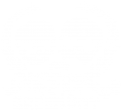 Принт Футболка Green Day 21 centure - FatLine