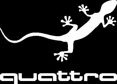 Принт Кепка-тракер Quattro - FatLine