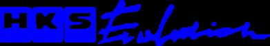 Принт Толстовка HKS logo - FatLine