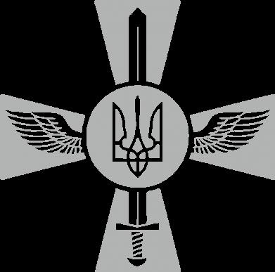 Принт Реглан Меч, крила та герб - FatLine