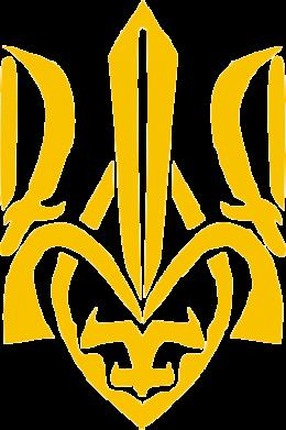 Принт Детская футболка Гарний герб України - FatLine