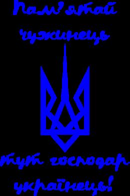 Принт Мужская толстовка Пам'ятай чужинець - тут господар Українець!, Фото № 1 - FatLine