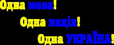 Принт Детская футболка Одна мова, одна нація, одна Україна! - FatLine