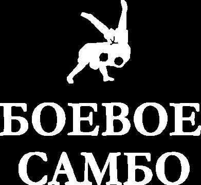 Принт Мужская футболка  с V-образным вырезом Боевое Самбо - FatLine