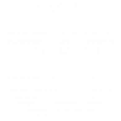 Принт Реглан Vinyl Rules - FatLine