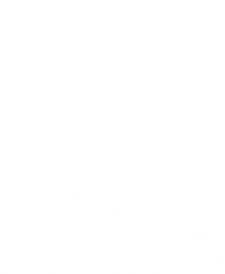 Принт Камуфляжная футболка Smotra ru - FatLine