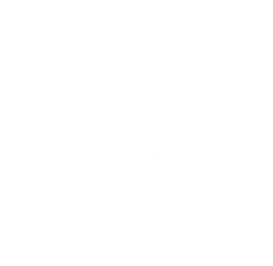 Принт Майка-тельняшка Death Star Academy - FatLine