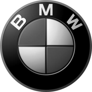 Принт Футболка Поло BMW Black & White - FatLine