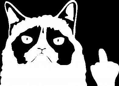 Принт Кепка Grumpy cat F**k Off, Фото № 1 - FatLine