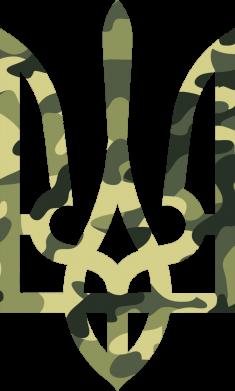Принт Снепбек Камуфляжный герб Украины - FatLine
