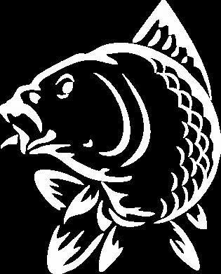 Принт Женская футболка поло Карп - FatLine