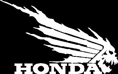 Принт Тельняшка с длинным рукавом Honda Skelet - FatLine