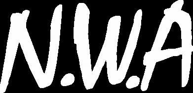 Принт Камуфляжная футболка N.W.A Logo - FatLine