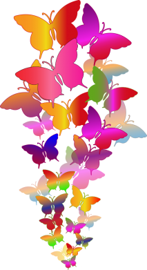 Принт Жіноча футболка Rainbow butterflies, Фото № 1 - FatLine
