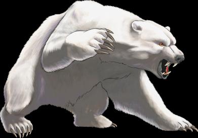 Принт Жіноча футболка Полярний ведмідь, Фото № 1 - FatLine