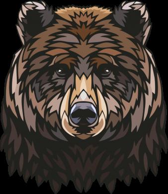 Принт Жіноча футболка Bear graphic, Фото № 1 - FatLine