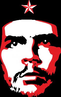 Принт Жіноча футболка Che Guevara face, Фото № 1 - FatLine