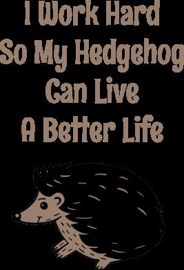 Принт Мужская толстовка Hedgehog with text, Фото № 1 - FatLine